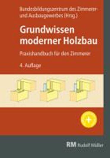 Grundwissen moderner Holzbau E-Book